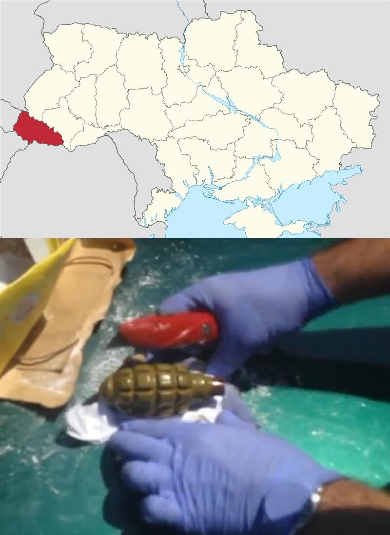 UA:  Grenades & firing pins mailed to Zakarpattia Oblast in a box of detergent. #euromaidan
